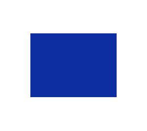 check-blue
