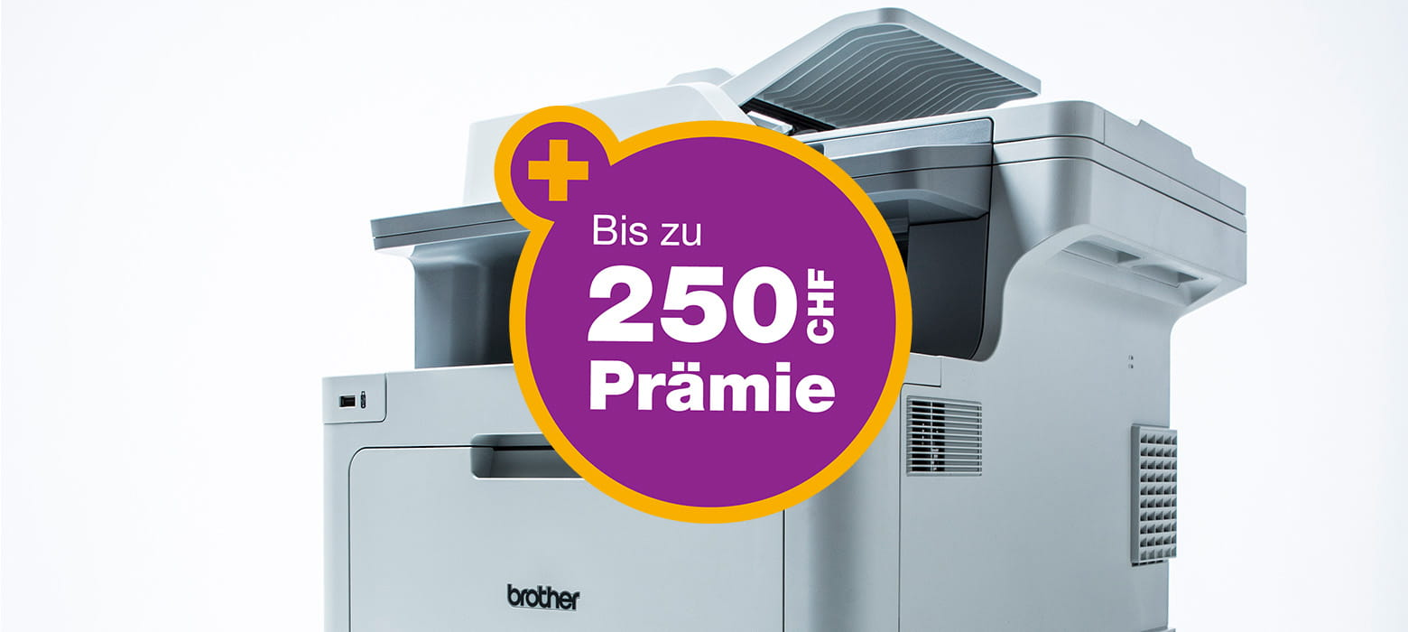 250DEAlle-Promotionsmodelle-treu
