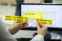 Ein mit dem Brother PT-P900W Etikettendrucker erstelltes Etikett wird vom Etikettenband abgezogen